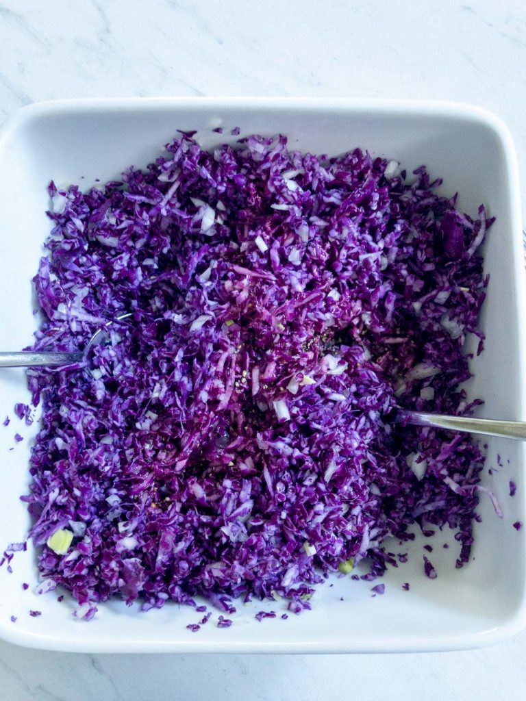 Red cabbage and onion mixed in bowll