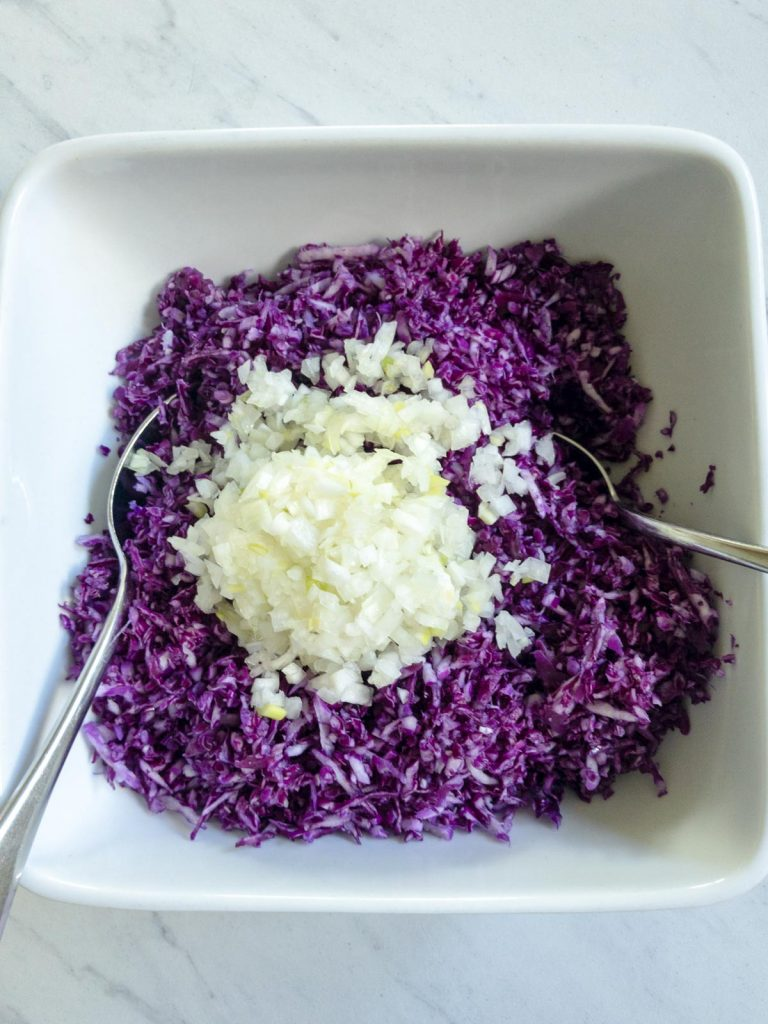 Chopped onions on top of red cabbage in bowl