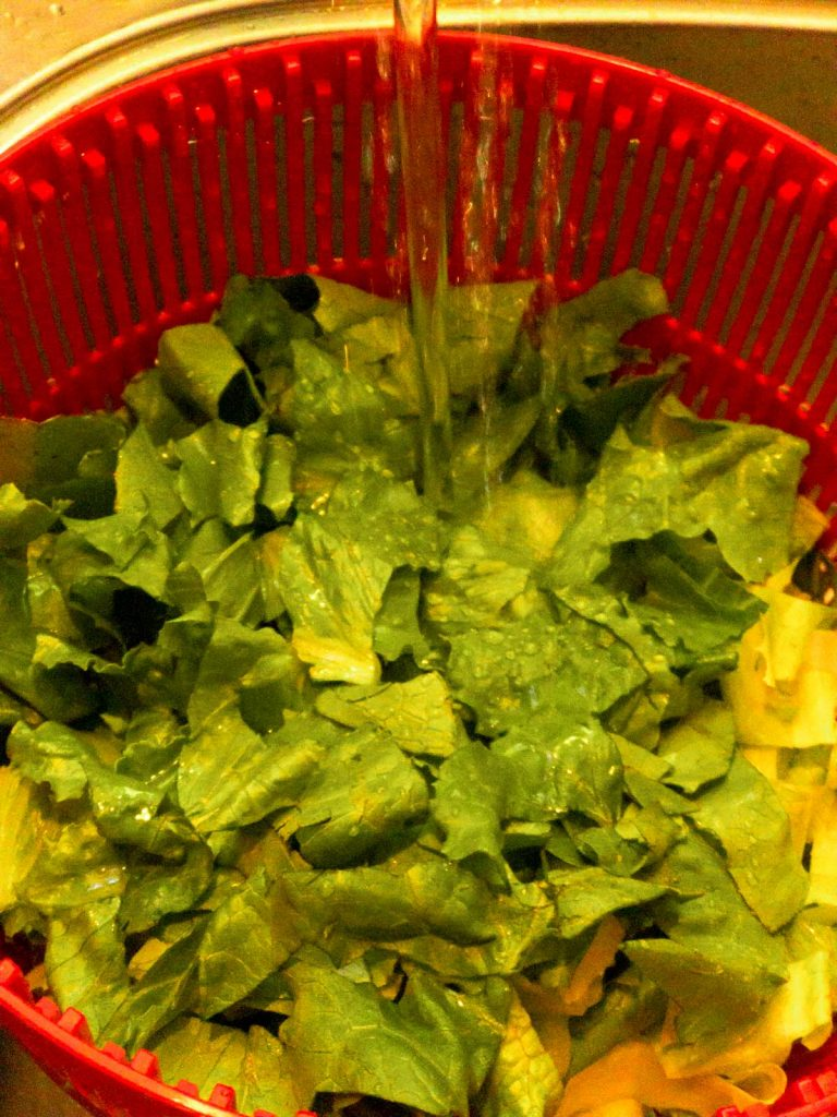 cut romaine lettuce in a red colander with water running over it